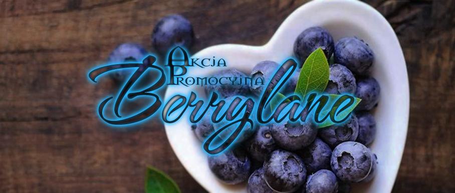 akcja promo berrylane